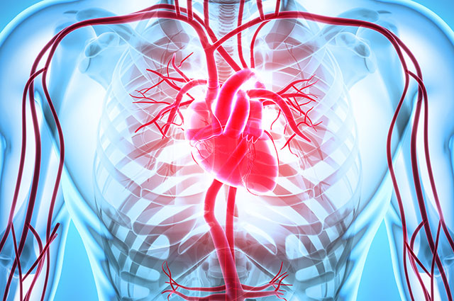 chirurgia-vascolare